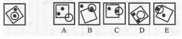 右面的五个图形中哪个最像左面的图形?