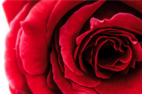 爱情热度评定问卷:你的爱情有多火热?