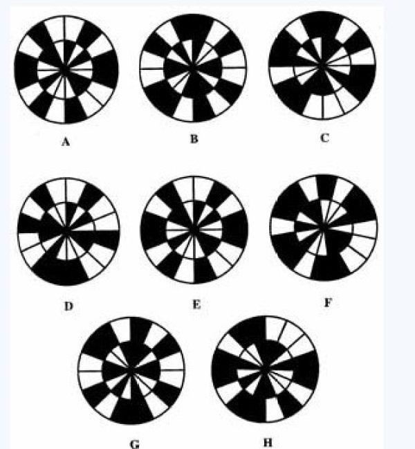 完成类比排列。按照A转化为B,那么C转化为D、E、F、G、H中的哪一个?
