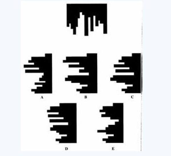 哪幅图与上图结合可组成正方形?