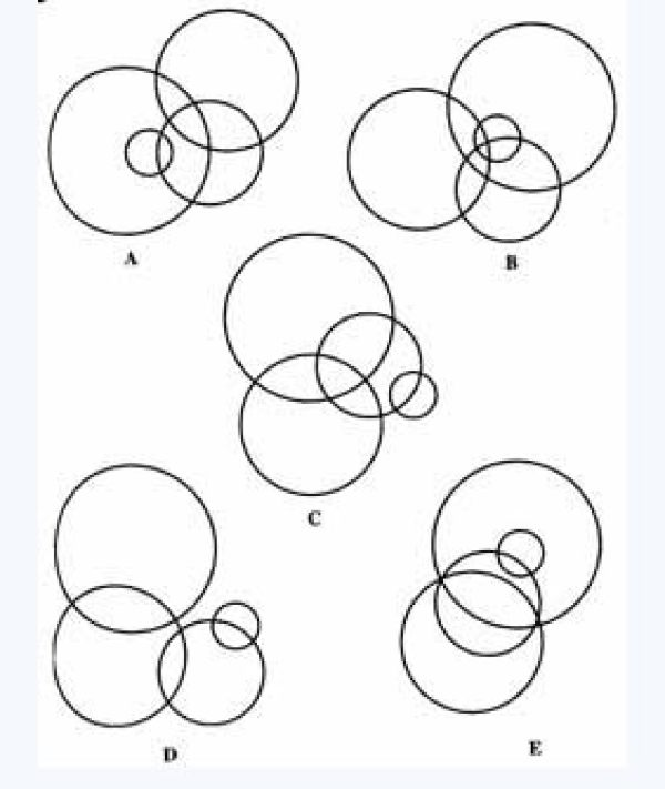 哪幅图有别于其他四图?